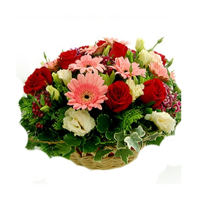 sepette mevsim Çiçekleri Gerbera Gül Lisyantus