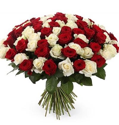 41 kırmızı gül buketi 101 Kırmızı Beyaz Güller