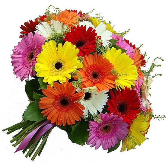 доставка цветов в анталии Гербера Букет