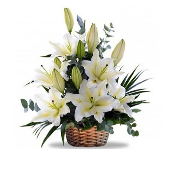 доставка цветов в анталии В Корзине Белый, Lilyum