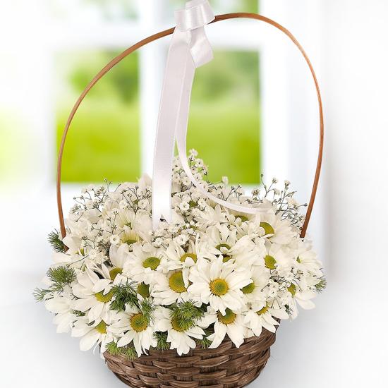 доставка цветов в анталии Маргаритки в корзинке